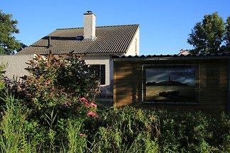 Texel De Krim Ferienhaus  Nr 742