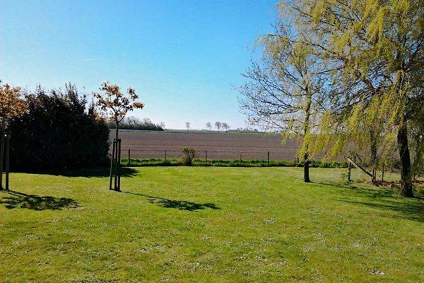 Noordzeelaan 97. Der Hinterhof mit der schönen Aussicht. Kinder können im Garten spielen.