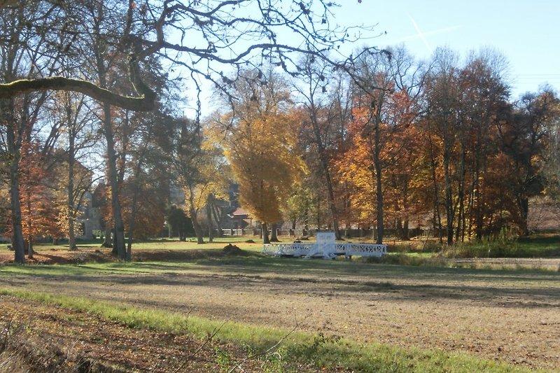 weisse Brücke im Herbst