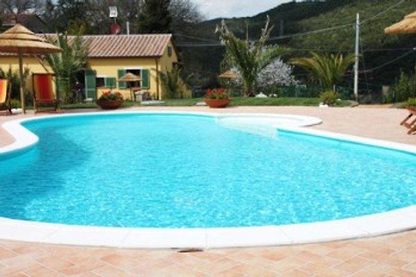 Haus mit privat Pool, Strandnaeh in Montescudaio - Bild 1