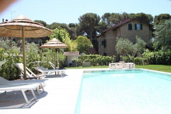 Deluxe Villa+privat Pool, 300m Meer in Etruskerküste - Bild 1