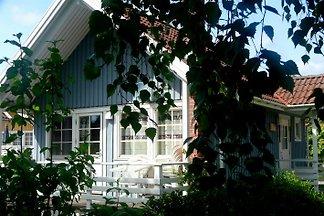 Domek letniskowy Ferienhaus Moorfrosch