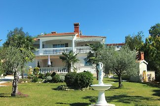 Villa  Mediteran ***