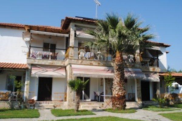 Fernandos Small Resort in Porto Ofrinio - Bild 1