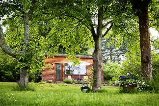 Haus Nussbaum - direkt am See