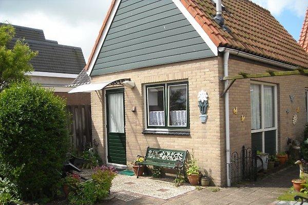 chiosco in Petten aan Zee - immagine 1