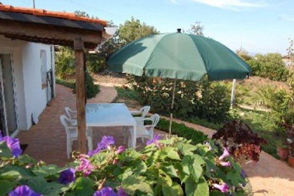 Apartamento de vacaciones Leo, piscina en Ferragudo - imágen 1