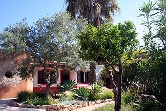 Ferienhaus Studio Rosa mit Pool