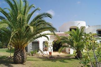 Ferienhaus Castelo Palmeira m. Pool