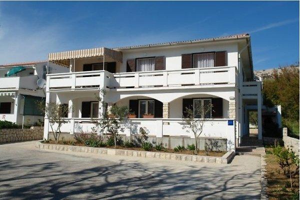 Apartments Andreja Pag en Pag - imágen 1