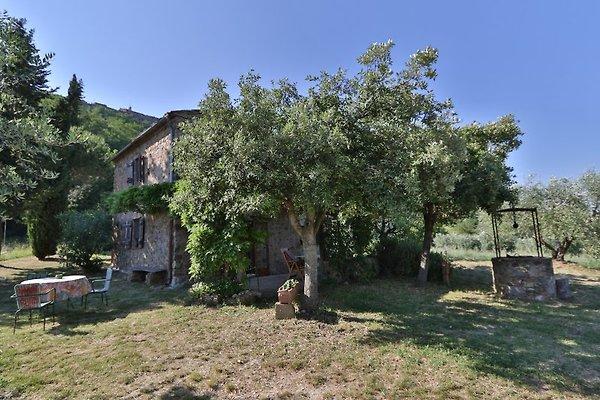 La Prediera en Chiusdino - imágen 1