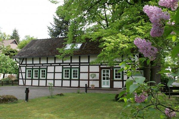 Schmetjens Hof en Burgwedel - imágen 1