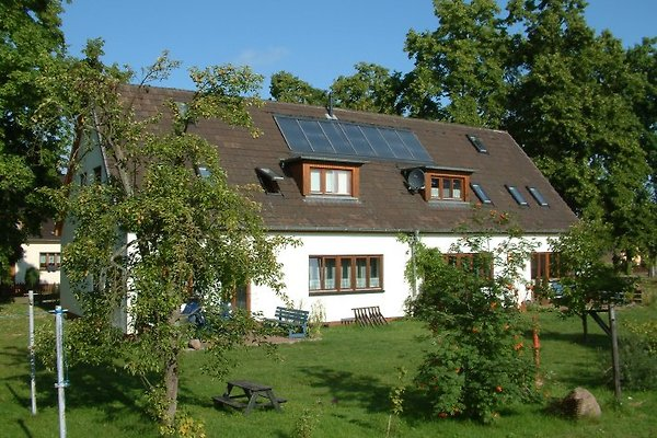 Ferienhaus vom Garten aus