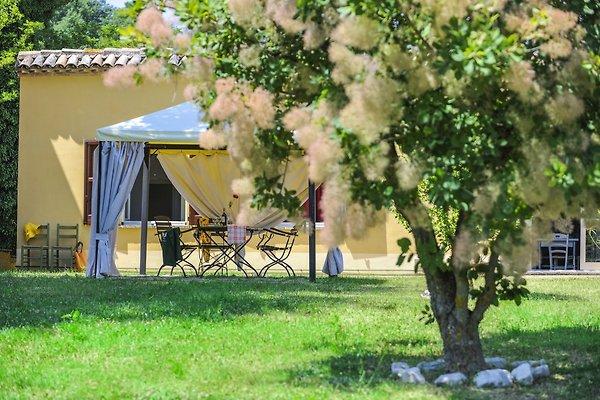 Ferienwohnung Casale degli Artisti in Urbino - Bild 1