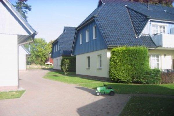 Südwiese à Prerow - Image 1
