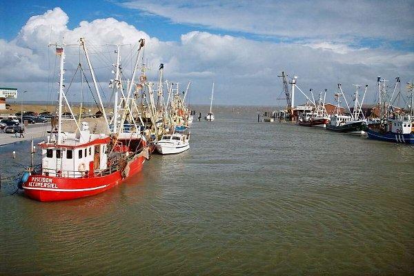 Kutter im Hafen von Dornumersiel