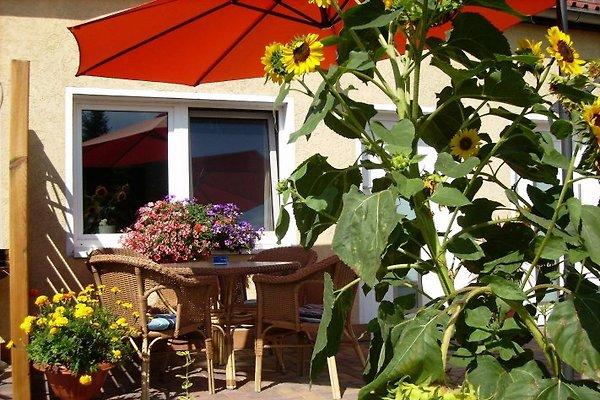 Ferienwohnungen Seeidyll à Groß Köris - Image 1