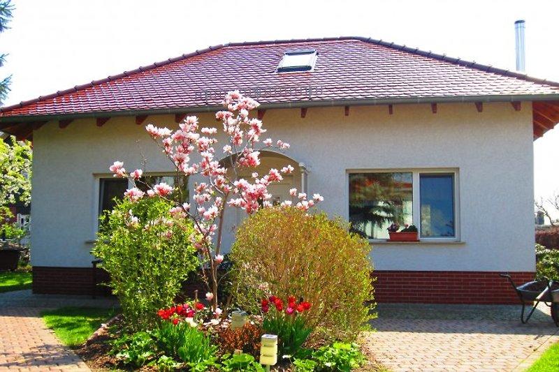 Ferienhaus in Blumberg am Lenné-Park