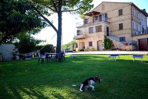 Ferienwohnung mit Meerblick (Manu) in Cossignano - Bild 1