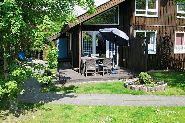 Haus Mika in Extertal Rott - Bild 1