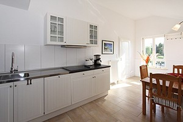 Ostsee Cottage in Sehlendorf - immagine 1