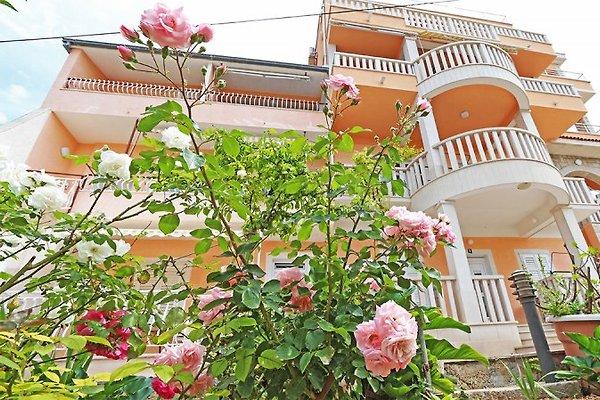 Villa Flamingo Apartments à Makarska - Image 1
