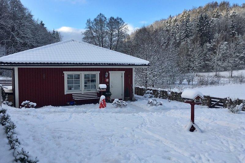 Winter im Tachbachtal