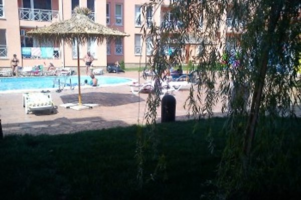 Sunny Day 6 , Resort à Sonnenstrand - Image 1