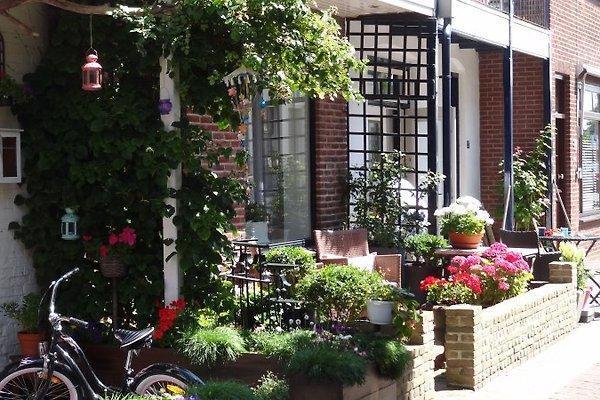 Vorderseite Haus (Terrasse)