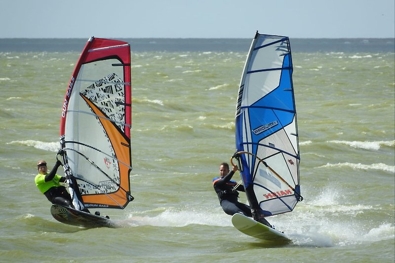 Surfurlaub am IJsselmeer