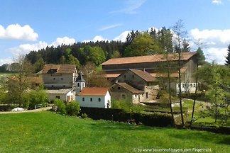 Familien Gruppenhaus in Bayern