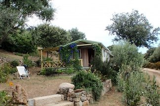 Cottage San Vincensu - Ile Rousse