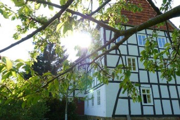 Historische Mühle Freienhagen in Waldeck - immagine 1