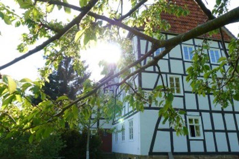 Historische Mühle Freienhagen in Waldeck - immagine 2