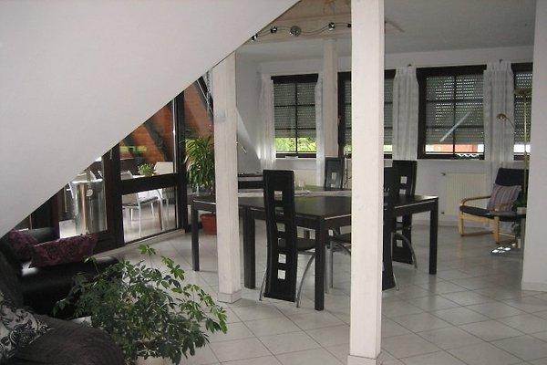 Haus Steffenberg  à Marburg - Image 1