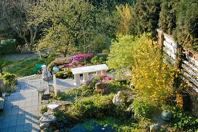 Ausblick: Teil vom Garten