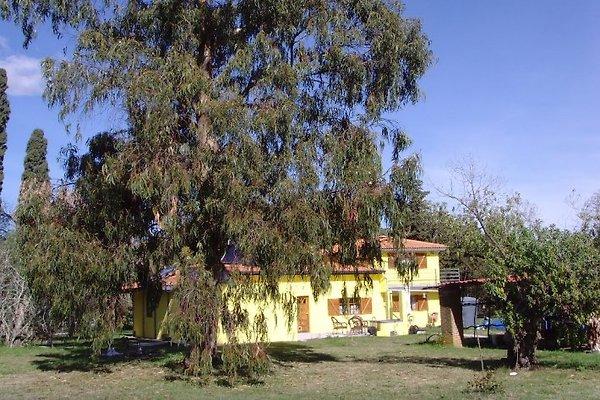 Casa Amarilla in Las Brujas - Bild 1