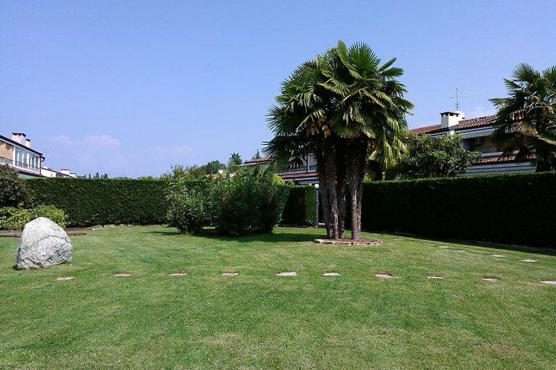 Unser Garten ist 580 m² gross