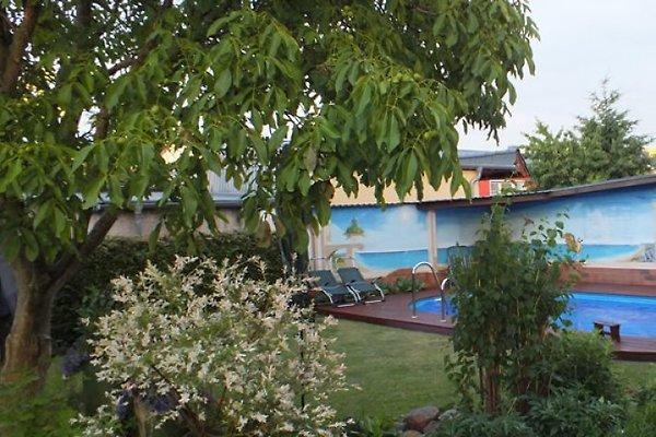 Wohnung Mit Garten Mieten Brandenburg