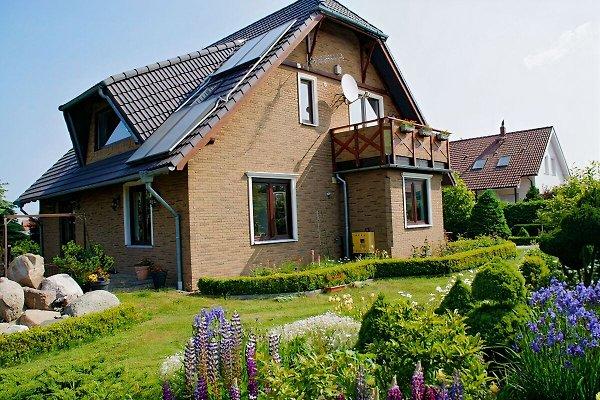 Janina Casa in Grzybowo - immagine 1