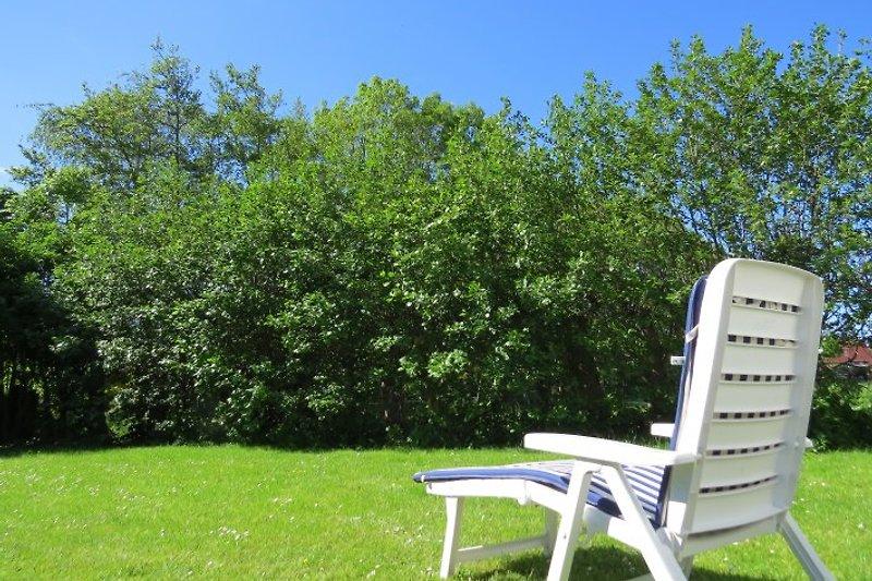 Einfach die Seele baumeln lassen: der grüne und sonnige Garten zur Mitbenutzung