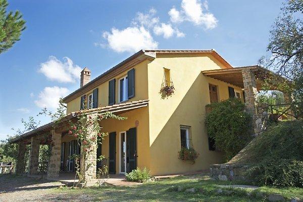 Villa Lucignano con piscina en Lucignano - imágen 1