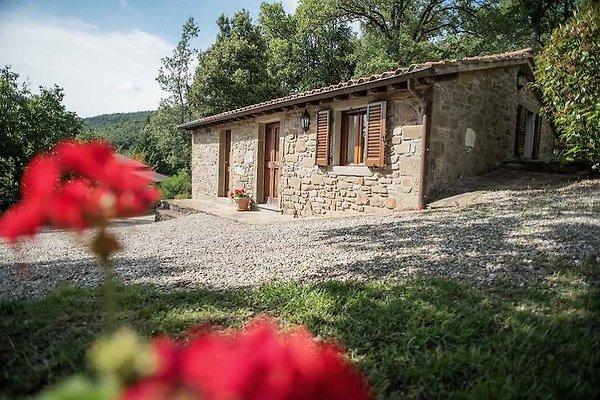 Casa in pietra a 3 Pers. con piscina in Riccio - immagine 1
