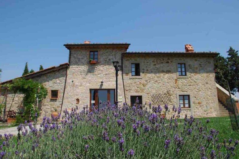 Villa Bella Vista con 4 appartamenti in Castiglione d'Orcia - immagine 2