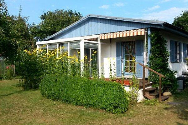 Haus Erdmute à Koserow - Image 1