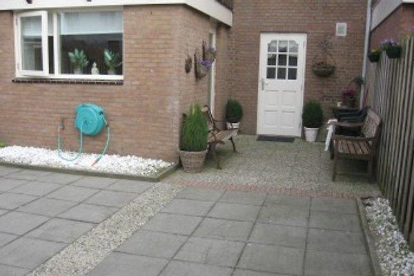 Cottage Life @ mare in Zandvoort - immagine 1