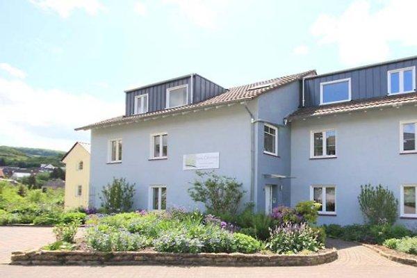 Ferienwohnungen Haus Oberberg in Nittel - Bild 1