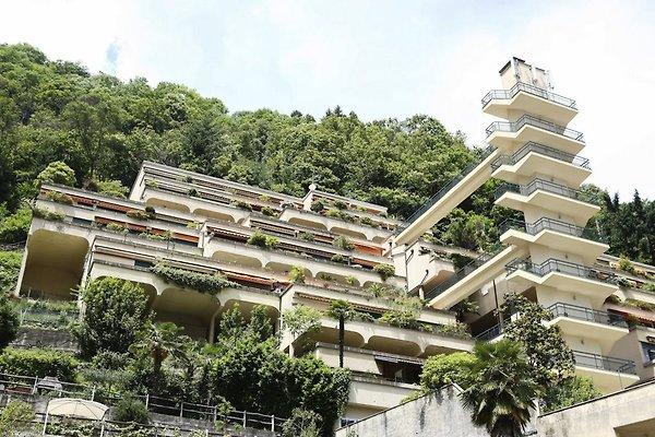 Ferienanlage La Gerbia Nr. 17 à Cannobio - Image 1