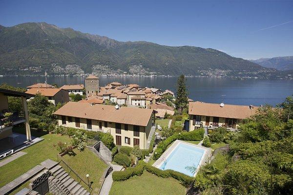 Residence La Fonte No. 19 in Pino sulla Sponda del Lago Maggiore - immagine 1
