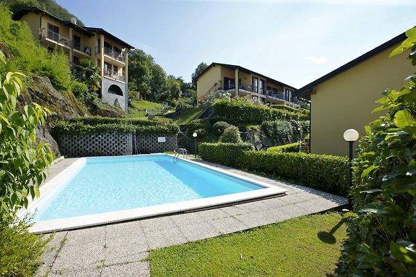 Residence La Fonte n ° 20 à Pino sulla Sponda del Lago Maggiore - Image 1